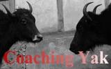 coaching-yak-finl-160-1001