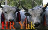 hr-yak-finl-160-100