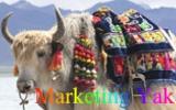 marketing-ornate-yak-fnl-160-100